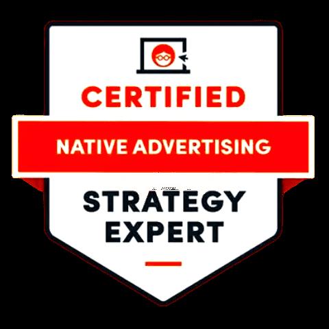 Esperto in Strategie di Native Advertising